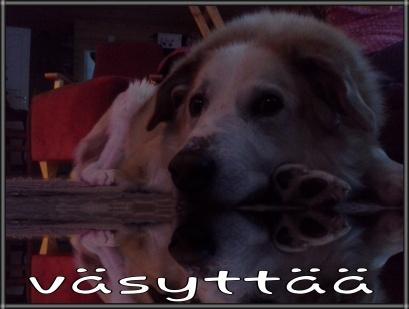 vä_syt_tää__